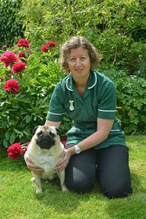 Clare Connolly at Springwell Vets in Tring